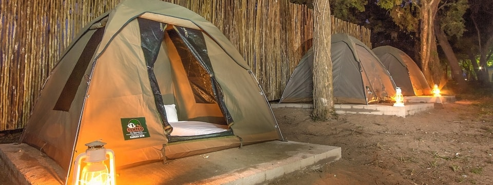 Ranger Safari Bow Tents